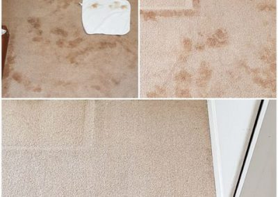 Cleaning Services in Workington
